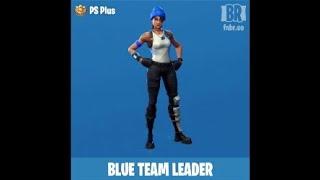 Best combination of Fortnite skins (blue team leader)