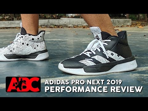Adidas Pro Next 2019 - Performance Review