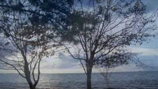 Beethoven - Liszt - Symphony n. 6 - movement 2 - Glenn Gould - part 2