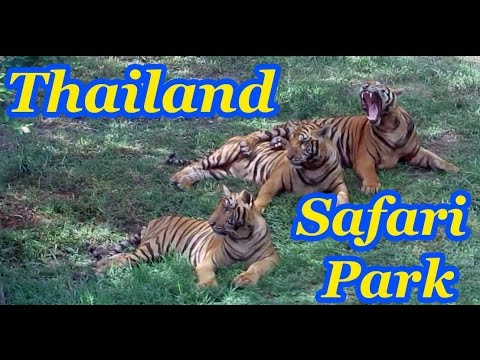 BANGKOK SAFARI PARK -FULL TOUR at Safari World, Thailand