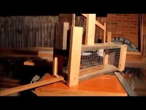 How to Make a simple Possum Trap