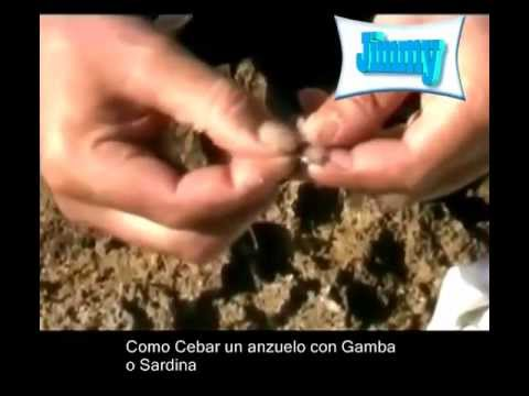 Anzuelar Gamba Pelada o Lomo de Sardina Fresca