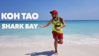 Koh Tao - Lady Boy - Shark Bay / ТАЙЛАНД / Базинян ШОУ
