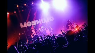 MOSHIMO - 猫かぶる