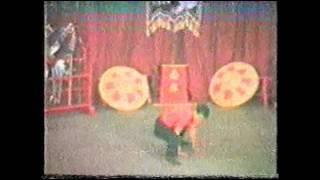 Monkey Kung Fu.  Tan Tai Ming demonstrating Nam Yang monkey routine.