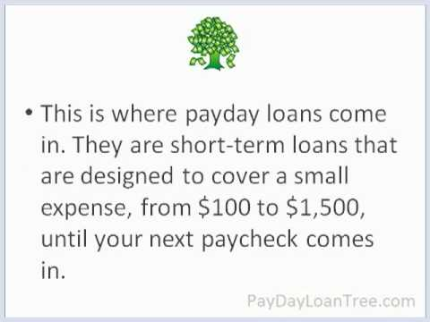 payday-loan-tree