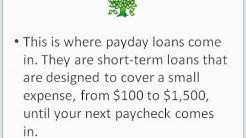 PayDay Loan Tree