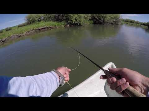 Fly Fishing On The Famous Teton River In Victor, ID
