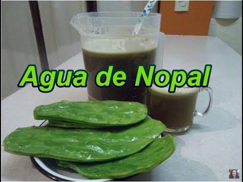 AGUA DE NOPAL - CACTUS DRINK - Lorena Lara