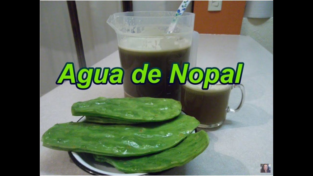 AGUA DE NOPAL - CACTUS DRINK - Lorena Lara - YouTube