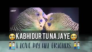 Tere Sang Jeena Yahan Text video (dj sb music)