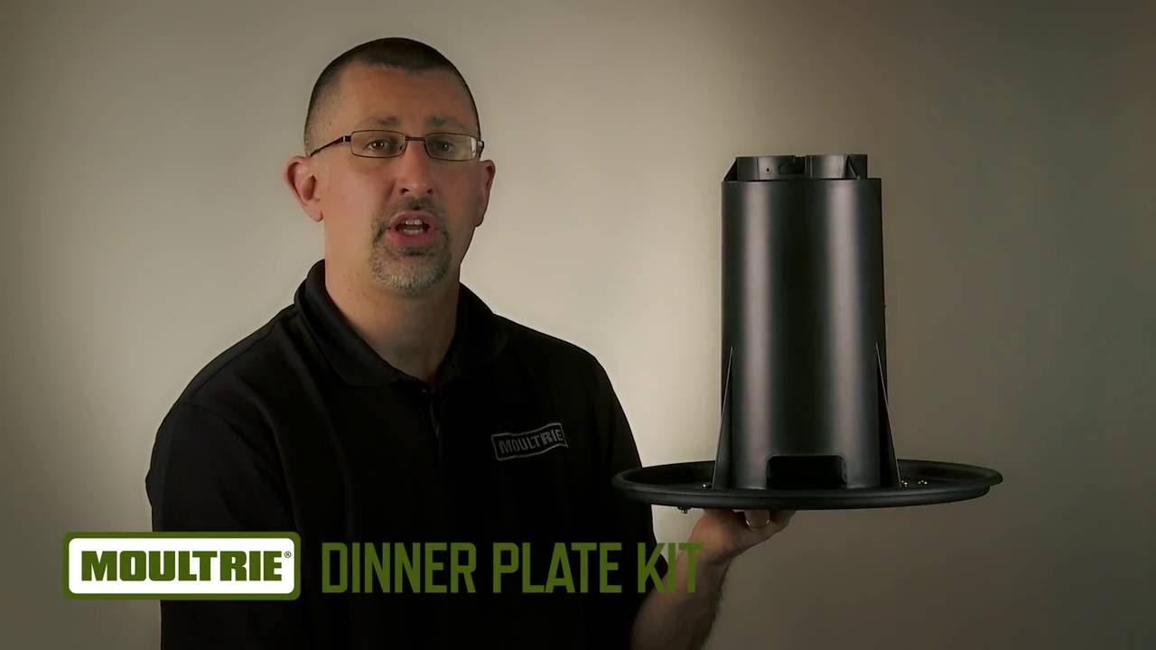 Dinner Plate Kit   Product Video   Clean. Moultrie  sc 1 st  YouTube & Dinner Plate Kit   Product Video   Clean - YouTube