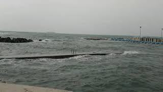 Allerta meteo del 29 ottobre, mareggiata a Livorno