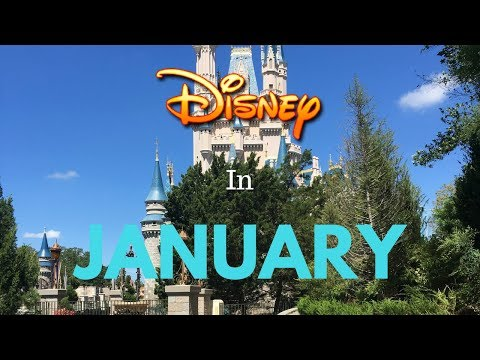 Visiting Disney World In January