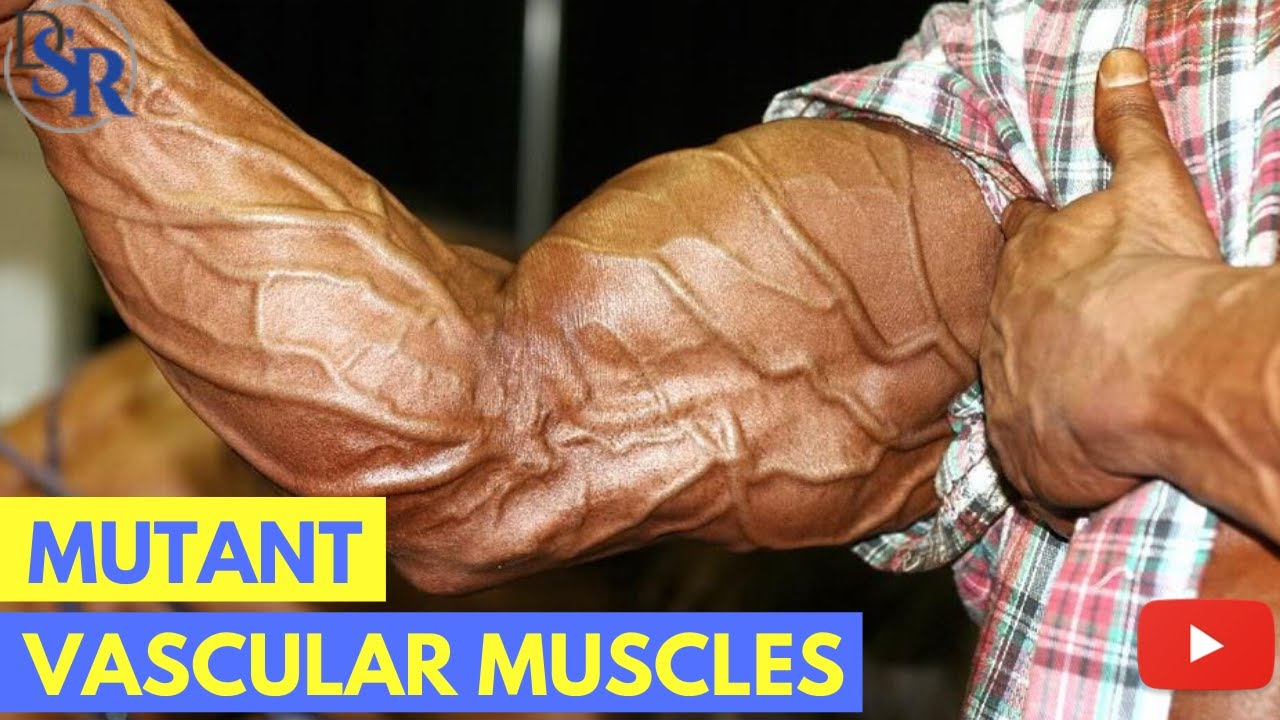5 Proven Tips To Get Bigger Harder More Vascular Muscles Youtube