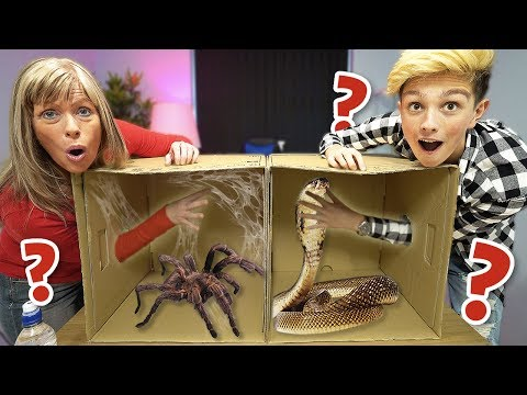 Whats in the BOX Challenge!!!!!!! (ANIMALS)
