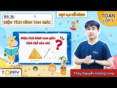 Diện tích hình tam giác - Toán lớp 5   Bài 36   Đạt 8,9 dễ dàng cùng TOPPY