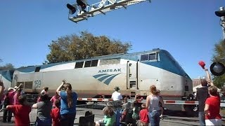 Amtrak Train Separates Strawberry Parade In Half