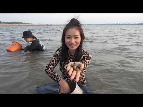 ງົມຫອຍຊາຍແຄມຂອງ//งมหอยทรายกลางแม่น้ำโขง//Snail hunting at Mekong river!#KhouanXai