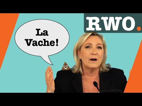 French Presidential Election 2017 Explained