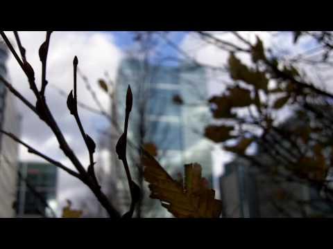 Zi8 - London scenes (in HD)