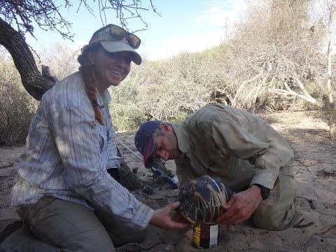 Transmitter Tracks: Episode 1 - Madagascar