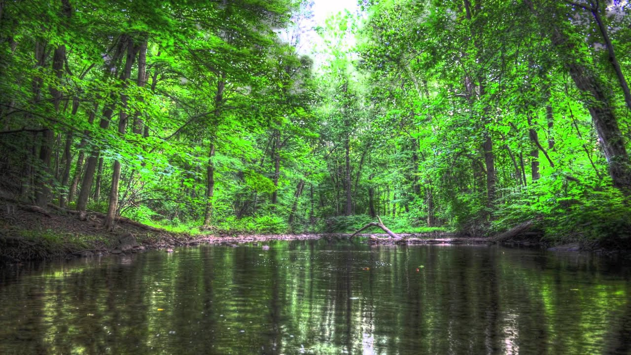 Green Brook Nj >> Watchung Reservation Green Brook HDRs 8/8/12 - YouTube