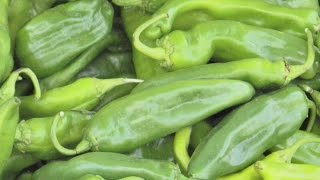 Hatch Chili Pepper Celebration At Central Market, San Antonio, Texas
