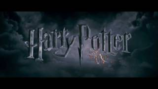 """Harry Potter and the Deathly Hallows - Part 2""  TV Spot #9"