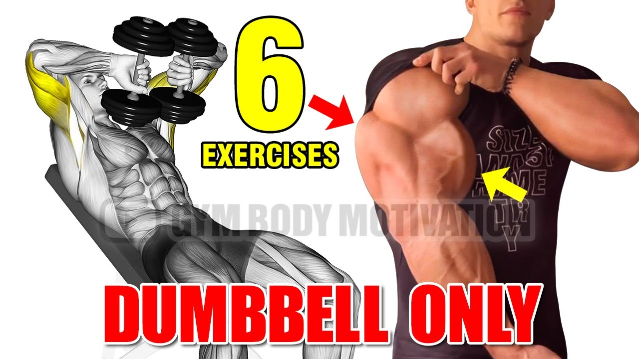 6 BEST ARMS WITH DUMBELLS ONLY