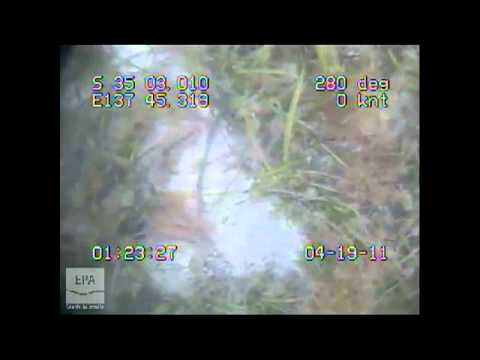 m0065 EPA Marine Aquatic Ecosystem Condition Report Gulf St Vincent 2011 - Coobowie Bay Nth