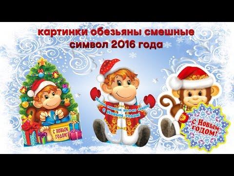Картинки смешные обезьяны символ 2016 года  Смотреть
