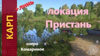 Русская рыбалка 4 - озеро Комариное - Карп у лодок