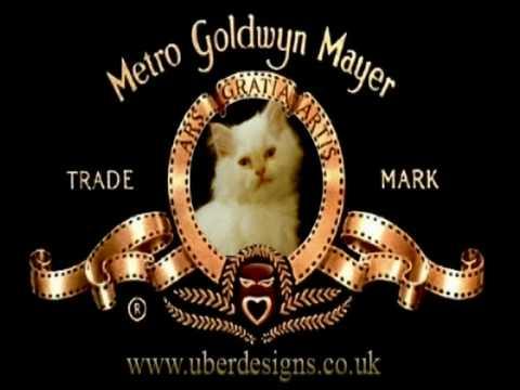 MGM Kitty