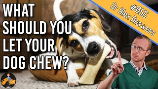 What are the Best Dog Chew Toys - nylabones and antler or are there better? - Dog Health Vet Advice