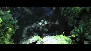 Анимационный фильм «Тарзан» 2014  Тизер #2  На русском  смотреть онлайн