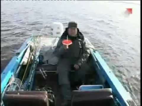 правила ловли рыбы на кружки