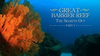The Great Barrier Reef,The Secrets Out, Part 2