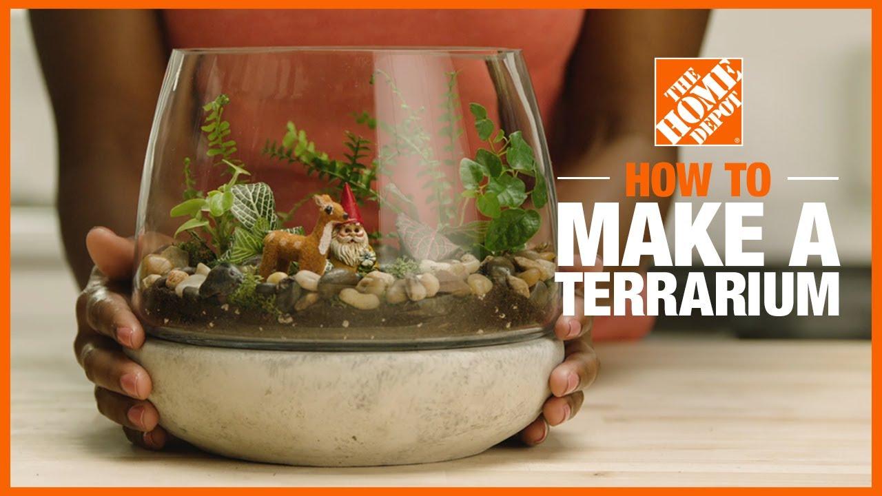 How To Make A Terrarium The Home Depot