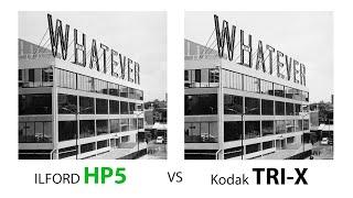 ILFORD HP5 PLUS vs Kodak TRI-X    Hasselblad 503 CW