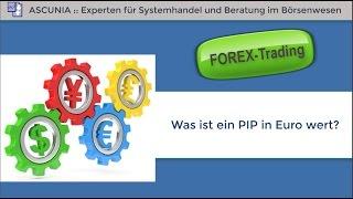 Forex Trading:  Was ist ein Pip in Euro wert?