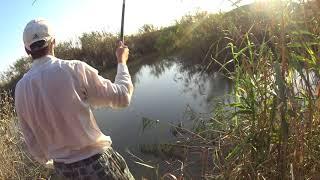 Риболовля на 28-му (вузлі) каналі. Вересень 2017. Частина 2.