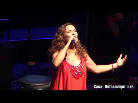 Sandra Mihanovich & Alejandro Lerner - Sin tu amor - HD
