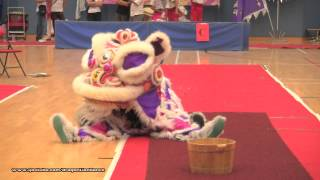 第21屆全港公開學界龍獅藝錦標賽:中學獅藝地青組 - (3)