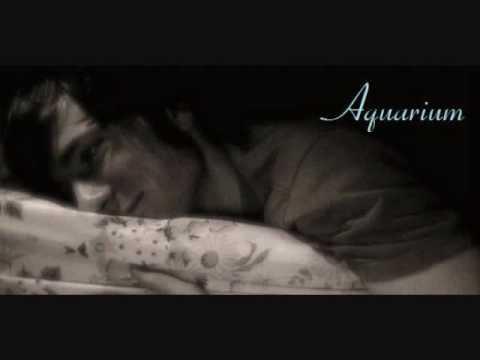 Aquarium (Adam Young) - I Am Denmark