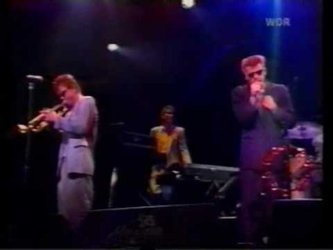Madness - It Must Be Love mp3