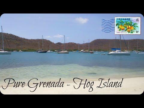 Hog Island Vlog ♥ Pure Grenada | Divya Amarnani Noel