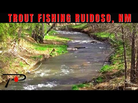 Trout Fishing Ruidoso