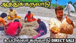 EXPORTல் முதல் முறையாக  ஆத்து கருவாடு  நேரடி விற்பனை  Yummy vlog tamil