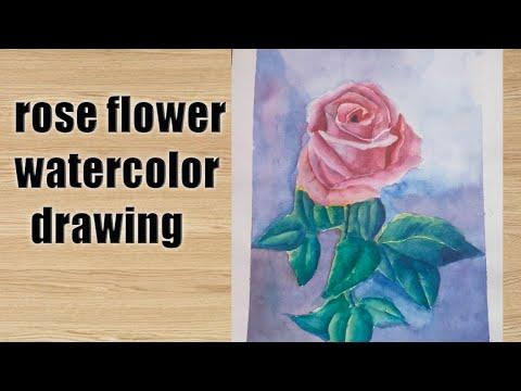 Rose flower drawing watercolour tutorials drawing